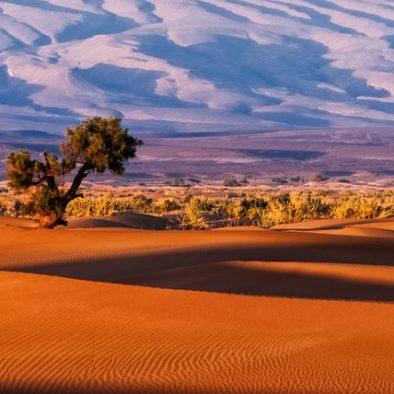 3 days from Fes to Merzuga desert tour